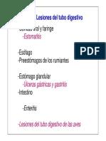 Digestivo Web 08