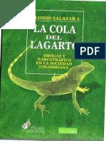 AlonsoSalazar La Cola Dell Lagarto Enlace Enero1998