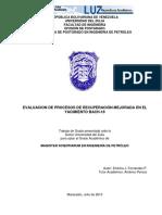 Evaluacion de Procesos de Recuperación Mejorada en El Yacimiento Bach-18