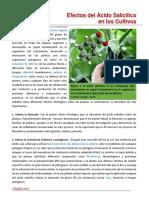 110. Efecto Del Acido Salicilico en Los Cultivos