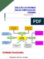Modelo de Los Sistemas Funcionales Complejos Del Cerebro