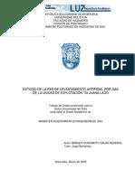Estudio de La Red de Levantamiento Artificial Por Gas, Brendy Coromoto, 2009