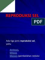 3. Reproduksi Sel