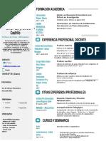 Curriculum Vitae - Docente