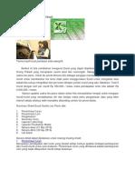 Excel Untuk Usaha Pribadi