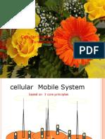 Cellular Design Fun(L3)