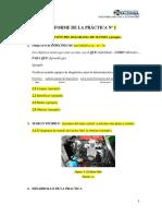Ejemplo Formato de Informe.docx