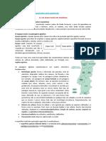 11anogeo.pdf