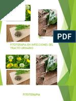 FITOQUIMICA PRESENTACION  FU.pptx