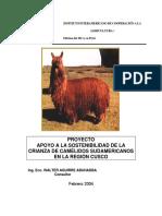 VICUÑAS.pdf