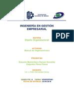 Manual de Organizacion de Nieves Artesanales
