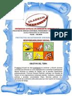 Actividad Nº 3 Informe de Intervención Social