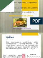 I.6.Lipidos