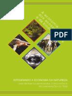 TEEB 2010 TEEB_Sintese-Portuguese.pdf