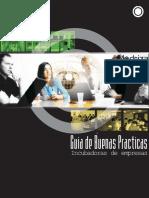 guia de buenas practicas.pdf