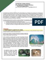 NUTRICIÓN CANINA BÁSICA UNAM 2015 R Aguila.pdf