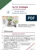gtp_t13.ecología__3ªparte_ciclo_del_carbono__2015-17