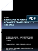 Pathology and Mechanism of Common Sports Injury To