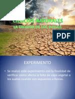 Experimento Ciencias Naturales (2)