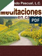 Meditaciones en Camino - Fernando Pascual LC