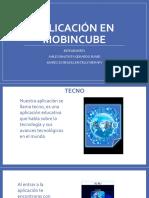 Aplicacion en Mobincube