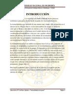 Informe de fisico y quimico  FIGMM