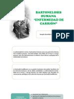 Bartonelosis Humana