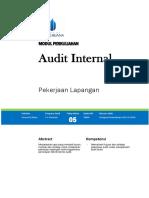 Audit Internal(1)