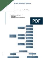 Técnicas de Investigación en Psicobiología (Mapa Conceptual)