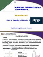 Clase 5 Bioquimica