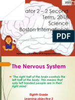 8th Science 2 Term 2018 the Nervous System