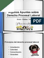 Algunos Apuntes Sobre Derecho Procesal Laboral Peruano UDH Universidad de Huanuco