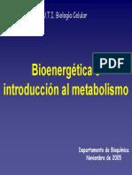 Bioenergética - Introducción al Metabolismo - PPT.pdf