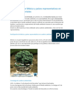 Participación de México y Países Representativos en Cumbres Ambientales