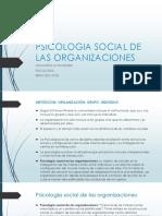 Psicologia Social de Las Organizaciones Schvarstein Leonardo