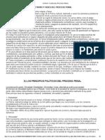 Etapas y Fases Del Proceso Penal