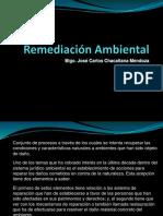 35162653-Remediacion-Ambiental