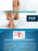 Diapositiva Sobre El Aparato Femenino