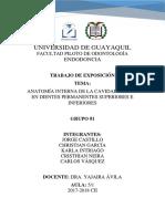 ANATOMÍA INTERNA DE LA CAVIDAD PULPAR EN DIENTES PERMANENTES