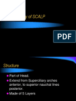 Anatomy of Scalp - Dental eBook & Lecture Notes PDF Download (Studynama.com - India's Biggest Website for BDS Study Material Downloads)
