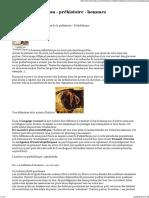 Habitat - Habitation - Préhistoire - Hommes Préhistoriques