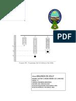 303677790-Balanza-de-Jolly.docx
