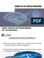 Comunicación Química de Las Células Nerviosas