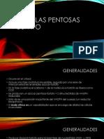 Vía de las pentosas fosfato (1).pptx