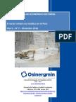 RAES-Mineria-Diciembre-2016-GPAE-OS.pdf