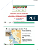 4 Mercado Mundial Del Esparrago Javier Sánchez Vigo