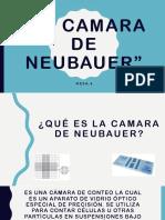 La Camara de Neubauer