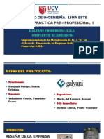 "Ppt- Informe Final proyecto 5 ""S"""
