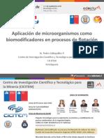 326283943 1 Pedro Galleguillos CICITEM PDF