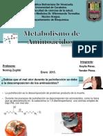 1metabolismodeaminoacidos 150801162139 Lva1 App6892